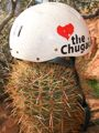 Chugah love in the desert.