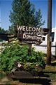 Beautiful Downtown Talkeetna